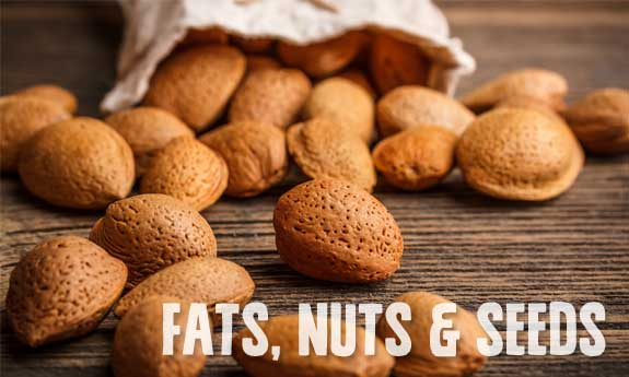 paleo diet foods list fats nuts and seeds
