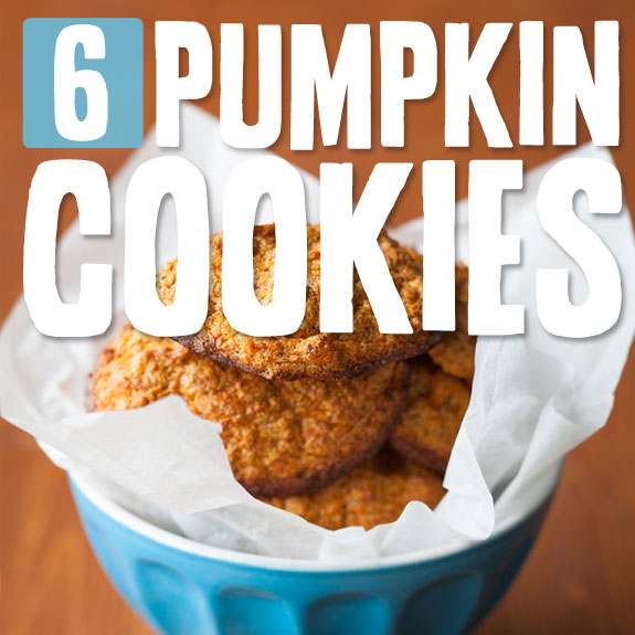 6 Pumpkin Cookie Recipes- nothing beats a warm pumpkin cookie fresh out of the oven!
