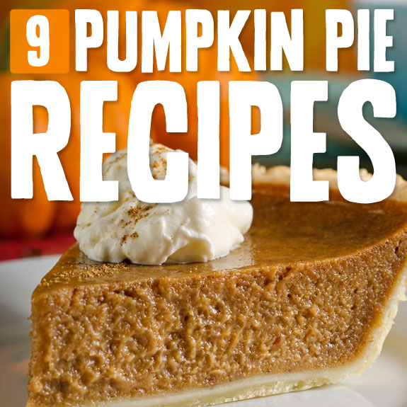9 Grain-Free Pumpkin Pies- I have never missed grain less! These recipes are delicious.