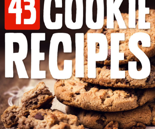 43 Scrumptious Cookie Recipes- there are some really unique cookie recipes on this list! I have tried about 14 of them and they were all great.