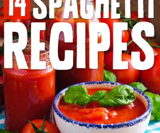 14 Amazing Spaghetti Recipes- love this list!