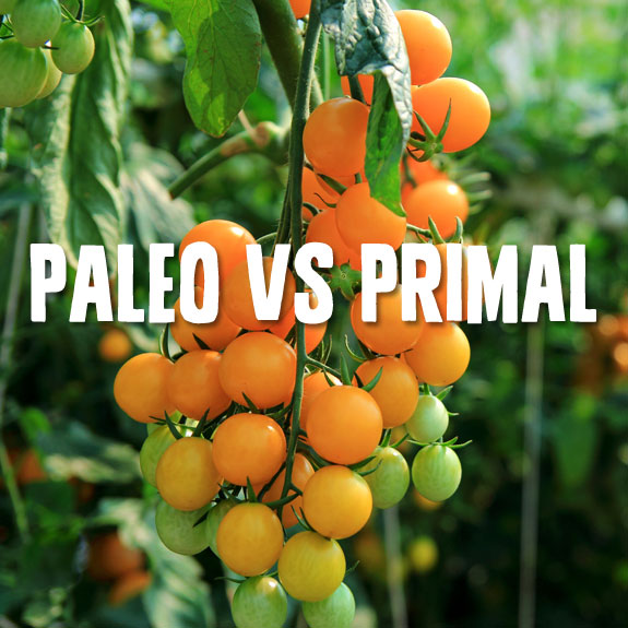 Paleo vs Primal- which way of eating is best?