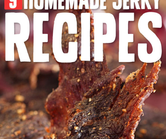 Who knew making tasty homemade jerky was this easy?
