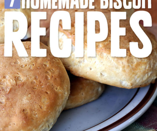 7 Homemade Biscuits- better than grandma used to make. These biscuits are flaky and delicious.