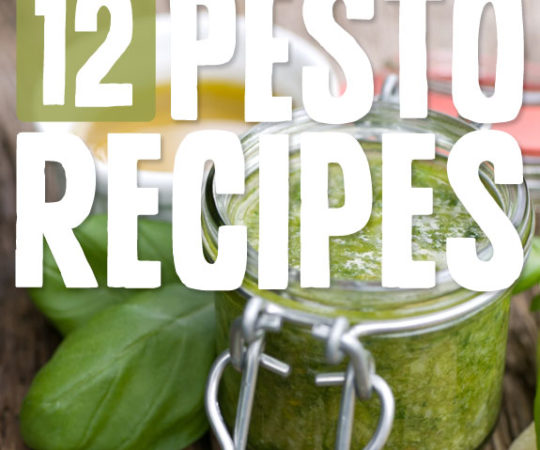 12 Heavenly Pesto Recipes- these are delicious on pretty much everything!