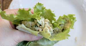 tuna avocado lettuce wraps