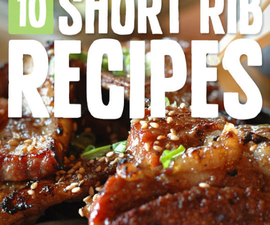 10 Mouthwatering Short Rib Recipes- OMG, these are so ridiculously good! You need to try them.