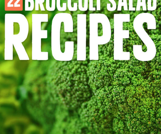 Get a full day's worth of Vitamin C from a nice big bowl of broccoli salad. Each recipe adds in supporting ingredients that add to the nutrition and make it an even healthier choice.