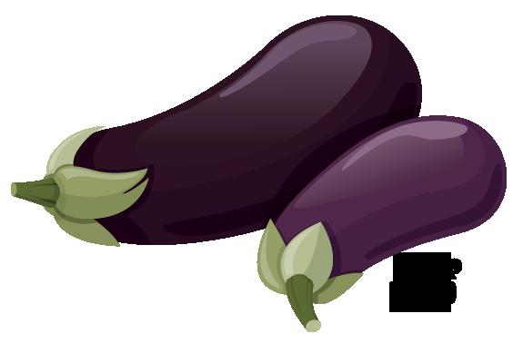 eggplant is a nightshade
