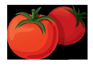 nightshade vegetable