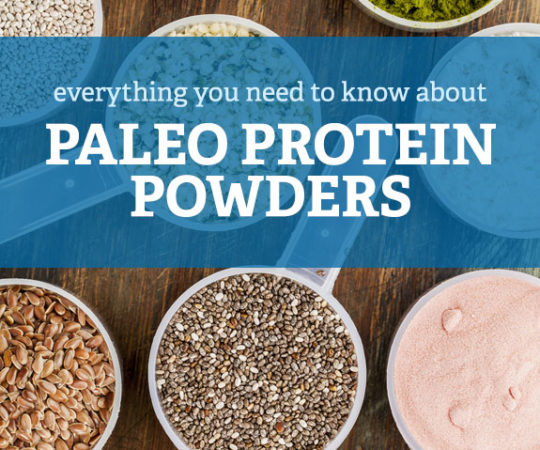 Learn about Paleo protein powder, what you are allowed to use and the positives and negatives of each type.