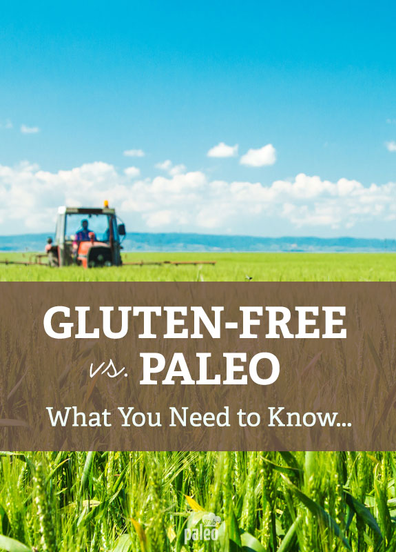Learn about the differences between the gluten-free and Paleo diet and get helpful tips on which lifestyle is right for your needs…