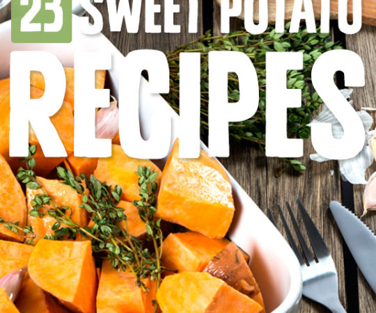 No matter the question, sweet potatoes are the answer! I found a ton of new favorites in these sweet potato recipes.