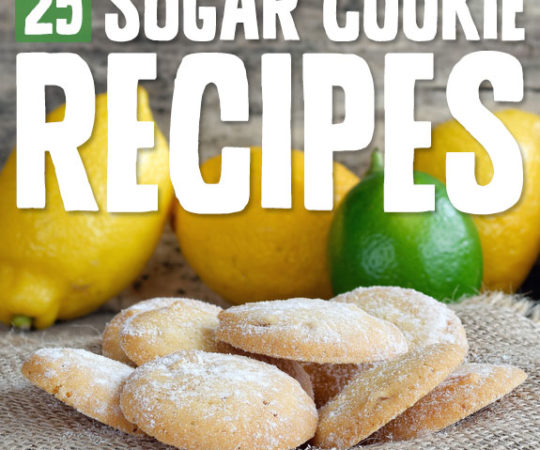 Next time you get a sweet craving, try one of these wholesome sugar cookie recipes! They are completely free of grains, diary and refined sugars.