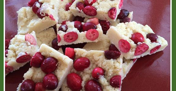 Cranberry Coconut Treats