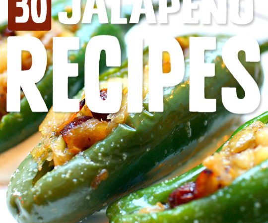 I love cranking up the heat with these jalapeno recipes. They've shown me so many new ways to use jalapenos that I didn't even think of before.