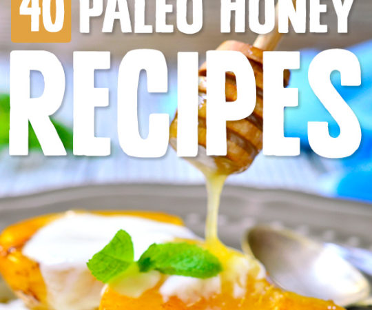 Sweeten things up with my favorite Paleo sweetener with these honey recipes. Find unique ways to use honey in recipes you'll never forget.