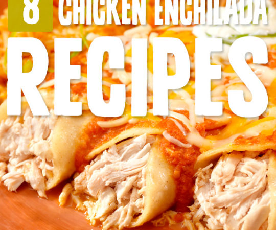 I didn't know there were so many ways to make awesome chicken enchiladas. Now it's just a matter of deciding which chicken enchilada recipe I like best!