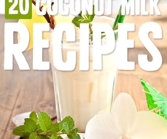 Keeping things dairy free is a lot easier with coconut milk, and each of these coconut milk recipes use it as a base ingredient.