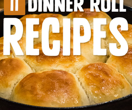 A lot of the meals I enjoy are capped off nicely with a dinner roll as a side. I taste tested a few of these dinner roll recipes before deciding on my favorite.
