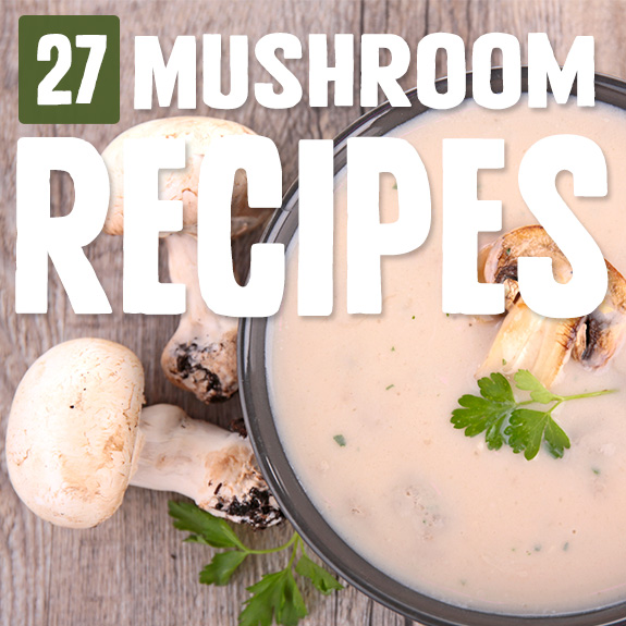 Now I'll never run out of ways to use any extra mushrooms I have on hand. With these mushroom recipes you'll get a selection of sides, main dishes, and more.