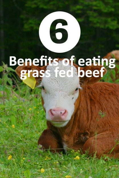 beef eating benefits
