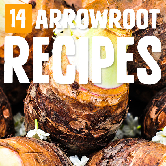 A friend introduced me to arrowroot, and I can't thank her enough. Now I use it a lot more after finding this set of arrowroot recipes.