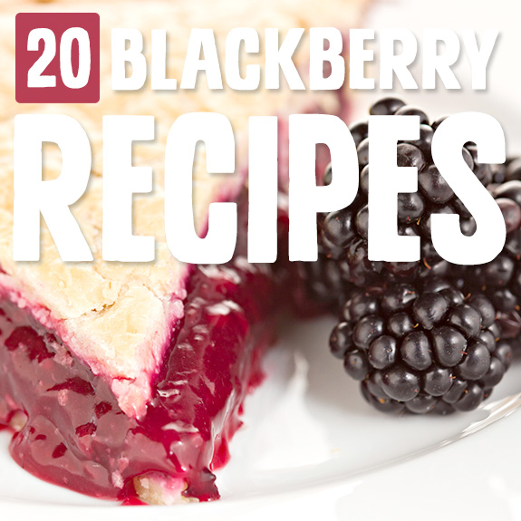 Eating more blackberries is easy with these blackberry recipes. Their unique taste shines in each one, and I've officially added them to my berry rotation.