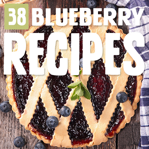 Those tasty little blueberries feature big time in these blueberry recipes. You had me at blueberry.