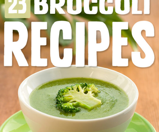 I'll never look at broccoli the same way again! These broccoli recipes are so delicious they make broccoli a treat to eat.