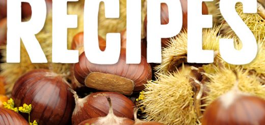 Fall in love with chestnuts like I did with these tempting chestnut recipes. Its subtle but hearty presence is the cornerstone to a delicious dish.