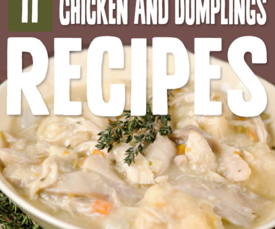 Chicken and dumplings is one of those staple foods from my childhood, so I was giddy to find this list of chicken and dumplings recipes to make it Paleo.