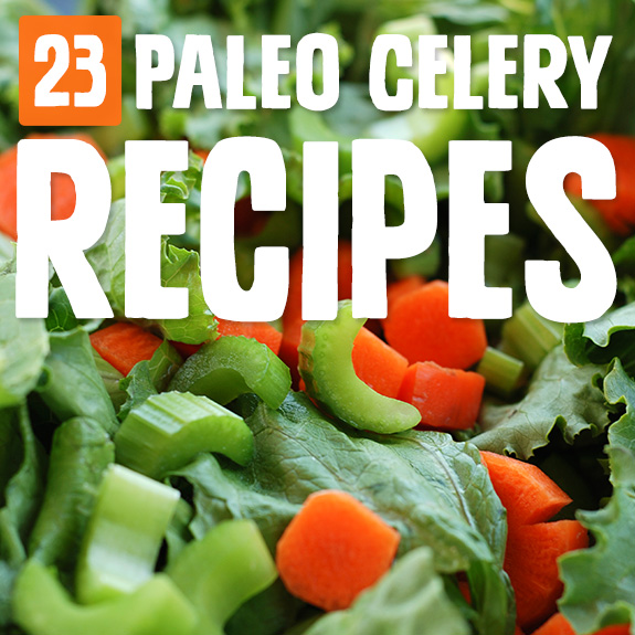 If you're not a big fan of celery - like me - then you'll appreciate these celery recipes that incorporate other ingredients to make it taste as good as it can.