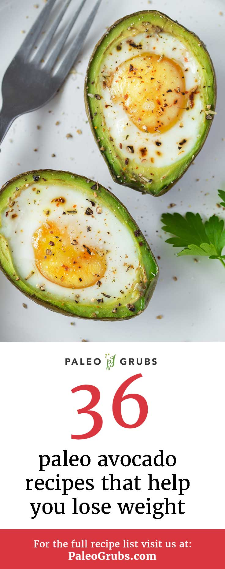 Here are some tasty, nutrient-dense avocado recipes that also can help with your weight loss efforts.