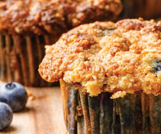 the best coconut flour blueberry muffins