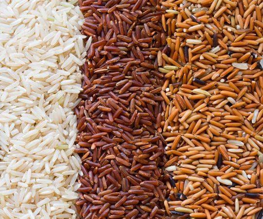 Is Rice Paleo?