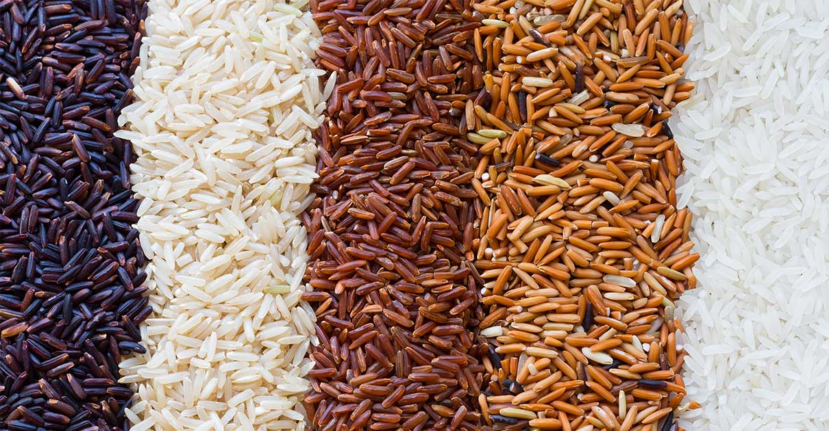 Is Rice Paleo?