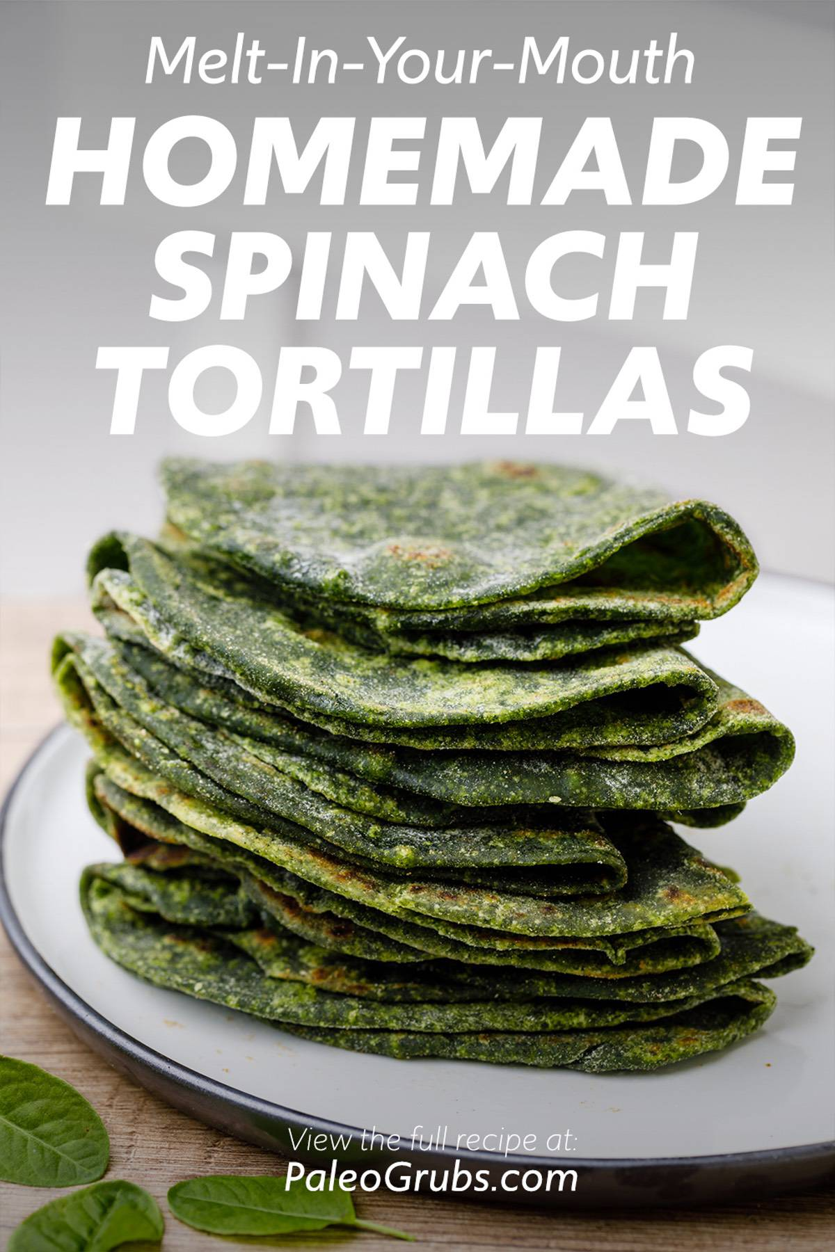 Melt-In-Your-Mouth Homemade Spinach Tortillas
